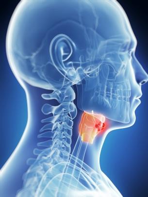Cancer laringian si hipofaringian - Ghid cancer Medicinas