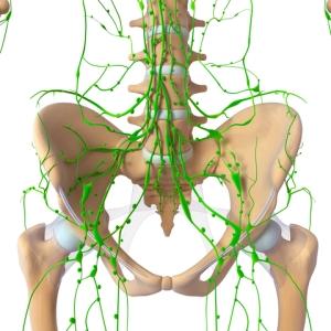 Semne si simptome boala Hodkin - Ghid cancer Medicinas