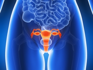 Cancer la trompa uterina - Ghid cancer Medicinas